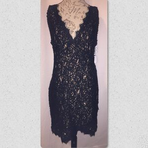 WOMENS 2X Charlotte Russe Black Lace Casual Dress